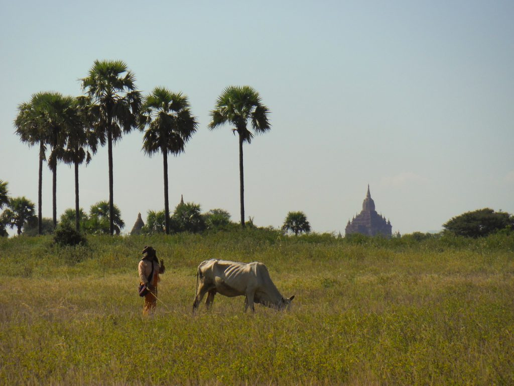Bagan - reisroute Myanmar