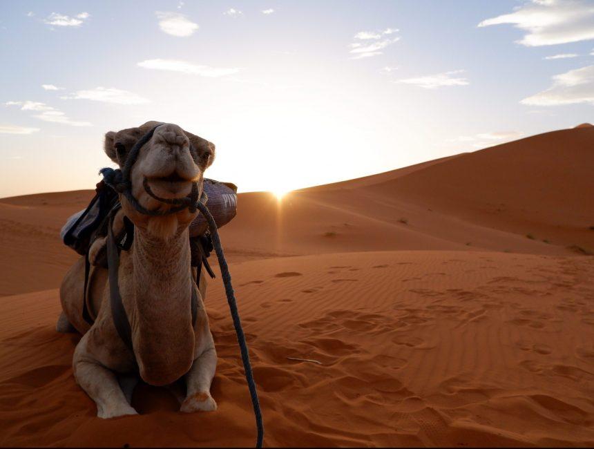 Marokko rondreisroute