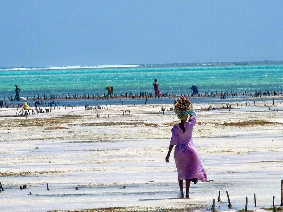 Jambiani - Reisroute - Zanzibar