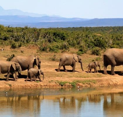 Serengeti - Reisroute Tanzania2 (2)
