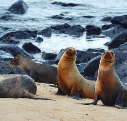 San Cristobal Galapagos reisroute