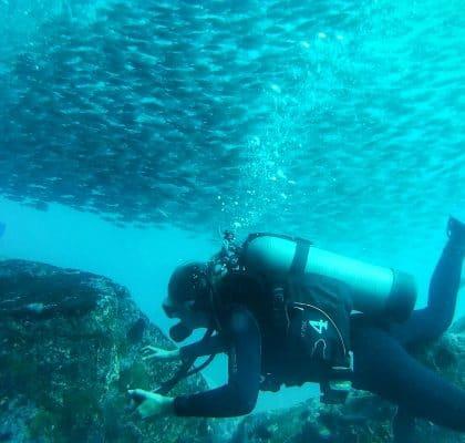 San Cristobal Galapagos reisroute duiken